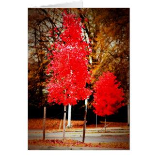 Árvore Cartão