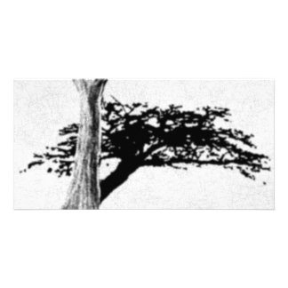 Árvore Cartao Com Foto Personalizado