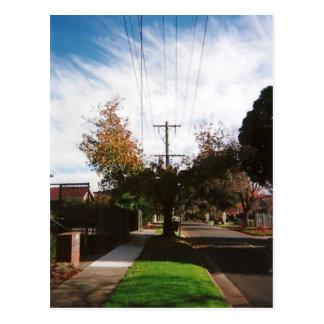 árvore cartões postais