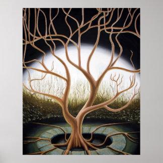 Árvore complicada poster