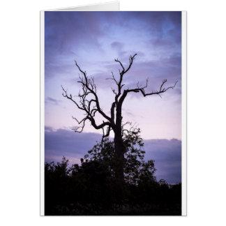 Árvore crepuscular cartão comemorativo