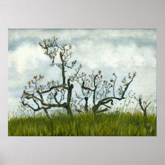 Árvore da aguarela poster
