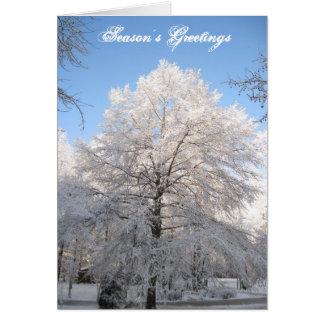 Árvore da neve cartão comemorativo