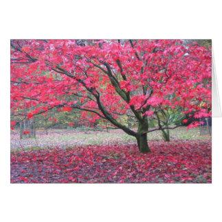 Árvore da queda cartão comemorativo