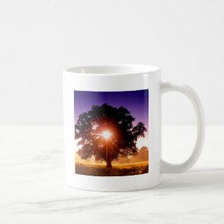 Árvore das árvores de vida Devon Inglaterra Canecas