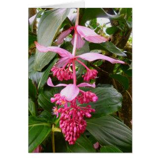 Árvore de orquídea malaia cartão comemorativo
