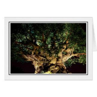 Árvore de vida cartoes