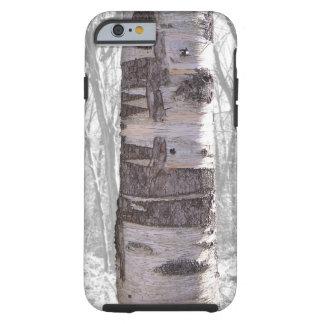 Árvore de vidoeiro capa tough para iPhone 6