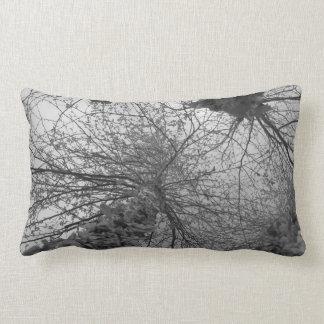 Árvore de vidoeiro preto e branco travesseiro de decoração