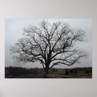 Árvore do antro dos diabos poster
