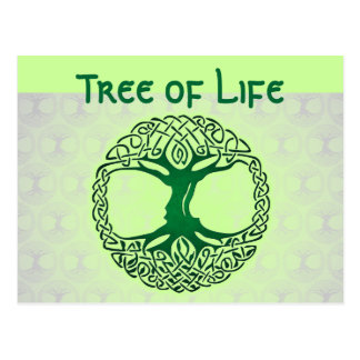 Árvore do cartão da vida cartão postal