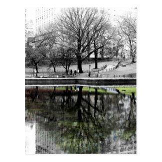 Árvore do Central Park Cartão Postal