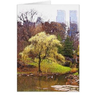 Árvore do Central Park na lagoa Cartão Comemorativo
