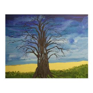 Árvore do homem cartão postal