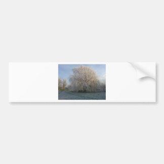 Árvore do inverno adesivo para carro