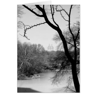 Árvore do inverno - Central Park NYC Cartão Comemorativo