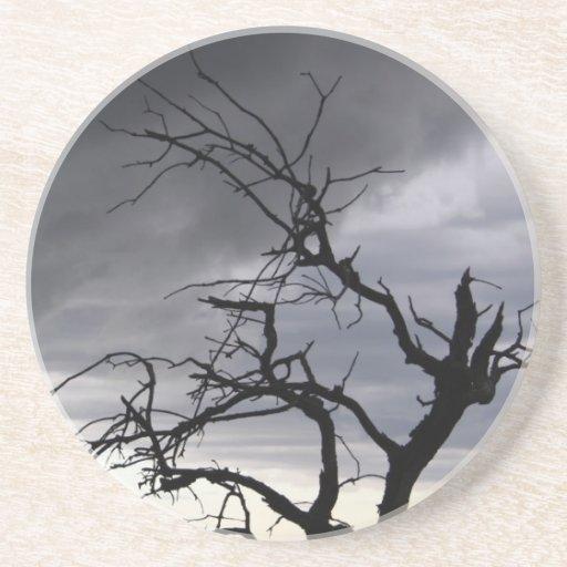 Árvore e Stormfront - Guadalupes Porta Copo