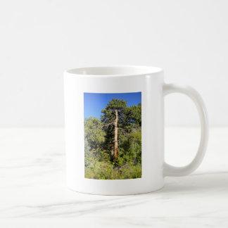 Árvore em Colorado Caneca