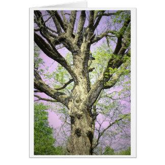 Árvore forte cartão comemorativo