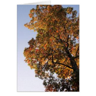 árvore grande cartão de nota