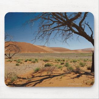 árvore inoperante na duna 45 na paisagem do desert mouse pad