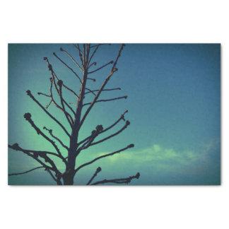árvore papel de seda