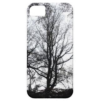 Árvore quase estéril atrasada B&W do outono do Cen Capas iPhone 5