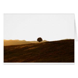 Árvore só cartao