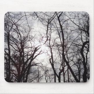 Árvores do Central Park no inverno Mouse Pad