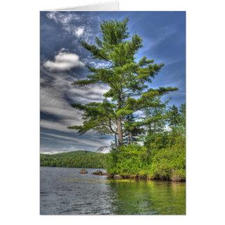 Árvores do NH Cartão Comemorativo