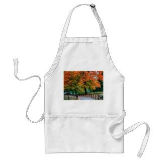 Árvores do outono na foto do Central Park Aventais