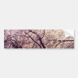 Árvores do primavera do Central Park Adesivo Para Carro