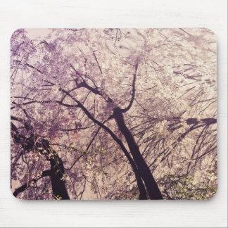 Árvores do primavera do Central Park Mouse Pads