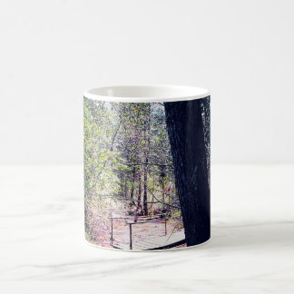 Árvores e trajeto canecas