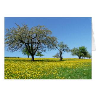 Árvores em um prado cartão comemorativo