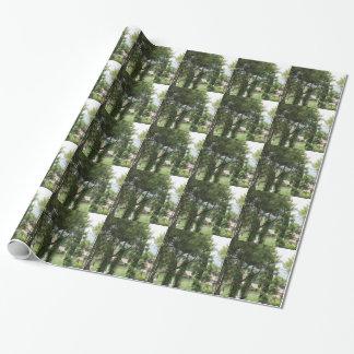 árvores papel de presente