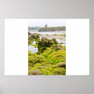as algas do castelo do ballybunion cobriram a poster