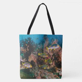 As bolsas de praia do recife de corais