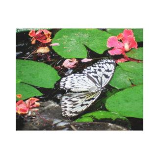 As borboletas não podem nadar a arte fotográfica impressão em tela