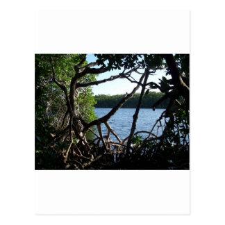 As chaves 1 de Florida Cartão Postal