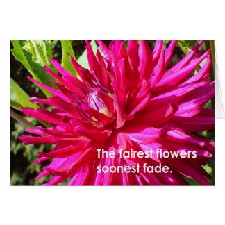 As flores as mais justas… cartão