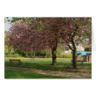 As flores cor-de-rosa do Prunus protegem um castel Cartões