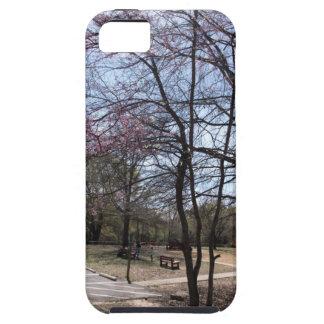 As flores de cerejeira são a bomba capa para iPhone 5