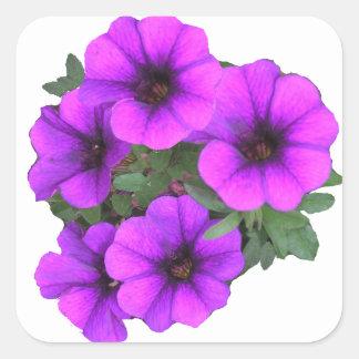As flores roxas bonito adicionam seu nome adesivo quadrado