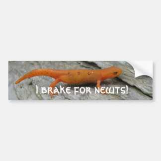 As fotos 003 de maio, eu travo para newts! adesivo para carro