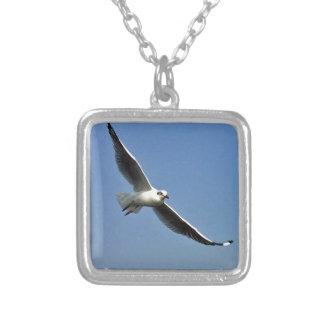As gaivotas são pássaros bonitos colar banhado a prata