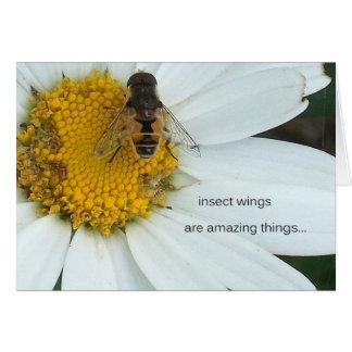 asas do inseto cartão comemorativo