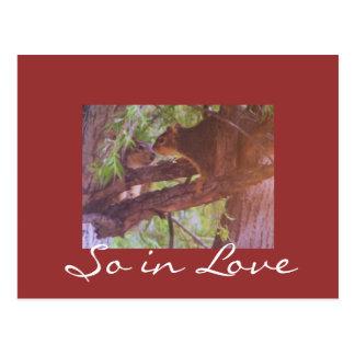 Assim no amor cartões postais