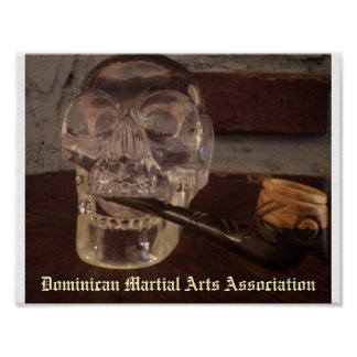 Associação dominiquense das artes marciais impressão