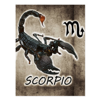 astrologia 2017 do scorpio cartão postal